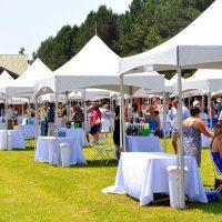 wine festival allstar 2